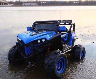 1-Blue Polaris-gi-1