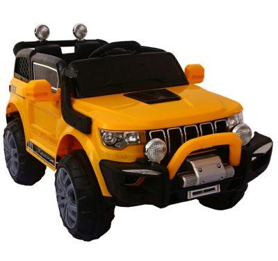 1-Jeep 4WD UTE-gi-2